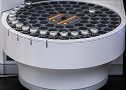Mycoplasma detection services